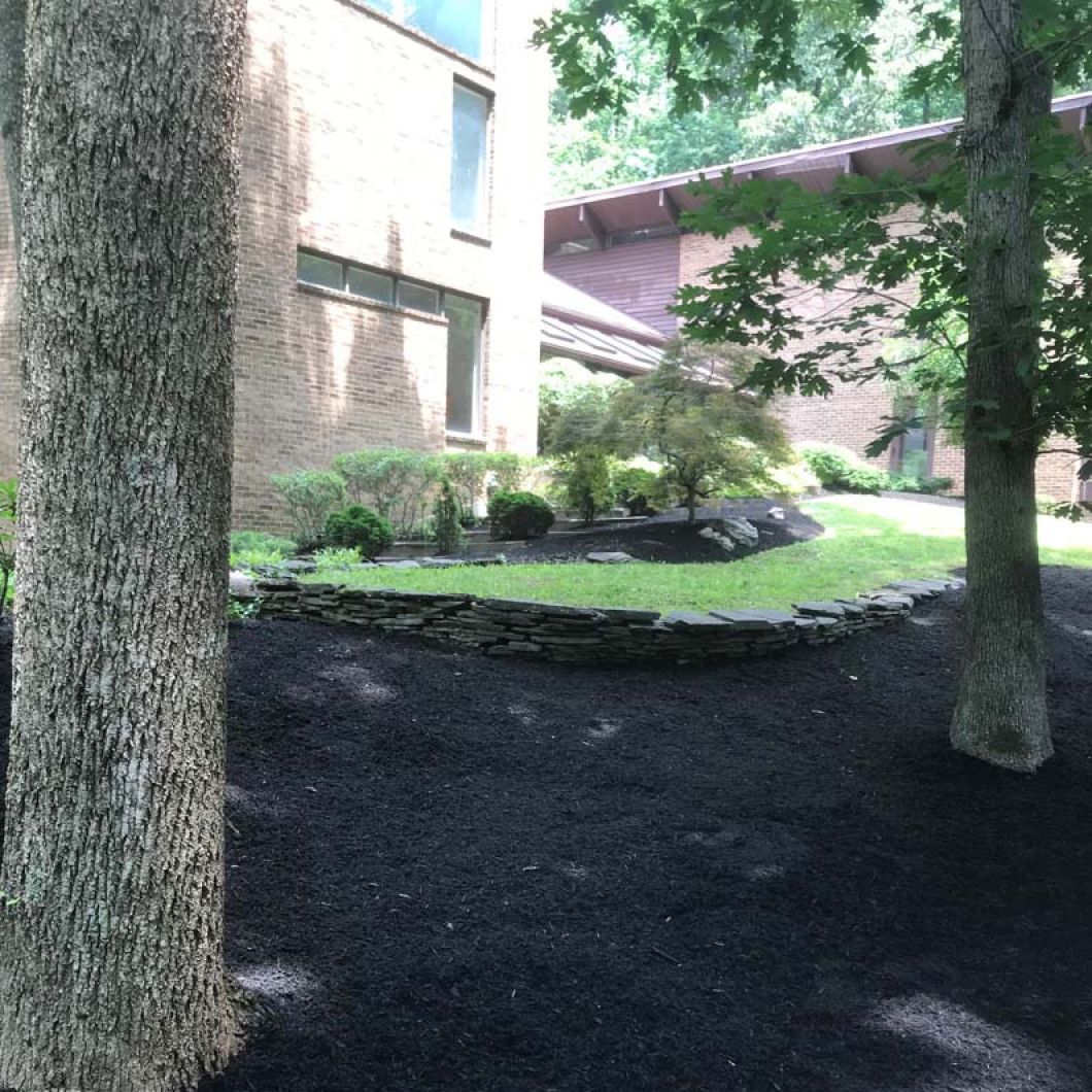 See What Mulch Can Do for Your Yard